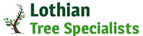 LTS | Tree Surgeon East Lothian | Tree Surgeon Scotland